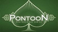Играть в игровой автомат Вулкан Pontoon Pro Series